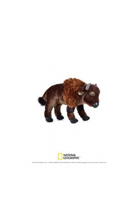 National Geographic Bison