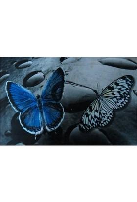 Giz Home Kıtty Kapı Paspası 40X60 Mavi Kelebek