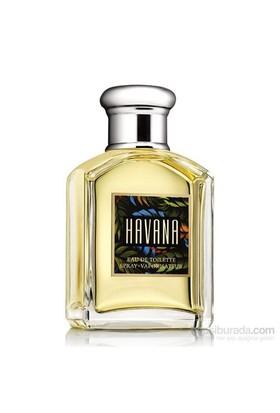 Aramis Havana Edt 100 Ml Erkek Parfüm