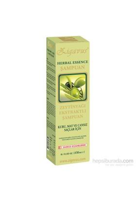 Zigavus Kuru Mat ve Cansıs Saçlar İçin Zeytinyağı Ekstraklı Şampuanı 450ml