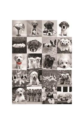 Dogs (1500 parça)
