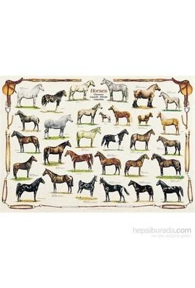Horses (1000 Parça)