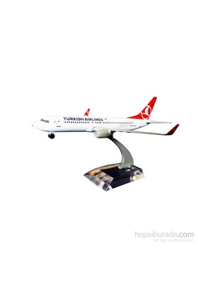 Tk Collection B737 800 1/250 Metal Model Uçak