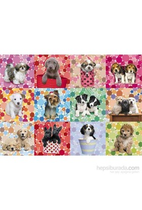 Loveable Puppies, Keith Kimberlin (1000 Parça)