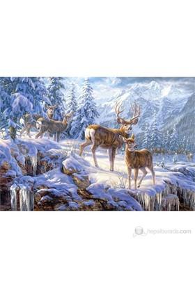 Castorland 1000 Parça Puzzle Winter Mountain Light
