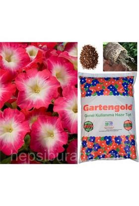 Gartengold Genel Kullanım Organik Torf 20 Litre