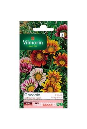 Vilmorin Koyungözü Çiçek Tohumu