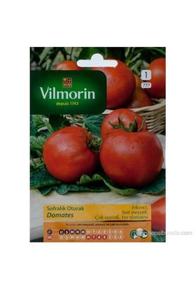 Vilmorin 777 Domates / Kraliçe (H-2274) Tohumu