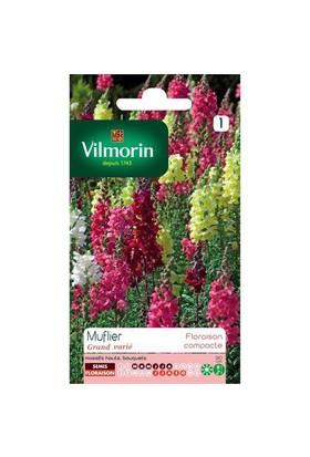 Vilmorin Karışık Renkli Maxi Aslanağzı Çiçek Tohumu