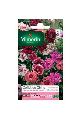 Vilmorin Karışık Çin Karanfili Çiçek Tohumu
