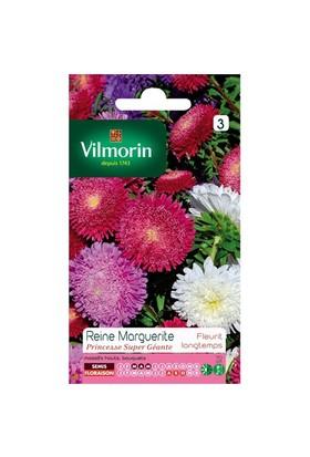 Vilmorin Aster Margarit Papatya - Yıldız Çiçeği (Prenses) Çiçek Tohumu