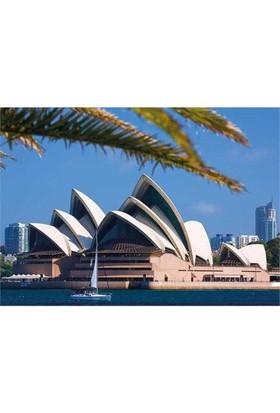 Dino Puzzle Sydney Opera House (1000 Parça)