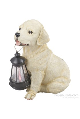 Globo Solar Köpek Beyaz