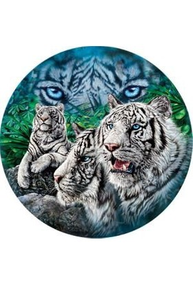 Masterpieces Puzzle Majestic Eyes (500 Parça)
