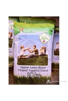 Plantistanbul 4 Karışım Park Çim Tohumu 1Kg