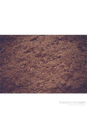 Plantistanbul Torf Paket 2,5Lt