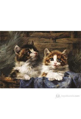 Gold Sepetteki Kedi Yavruları 500 Parça Yapboz
