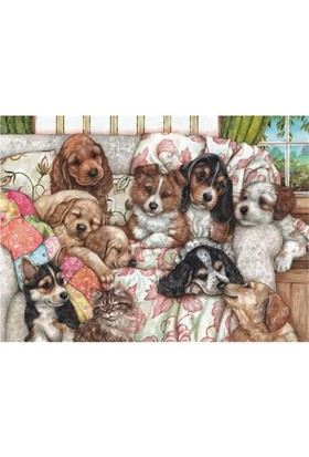 Yavru Köpekler / Puppies