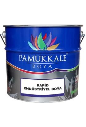 Pamukkale Rapid Endüstriyel Boya Mat Siyah 3 kğ