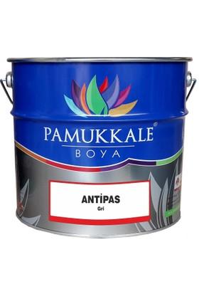 Pamukkale Sentetik Antipas Boya 1 kğ