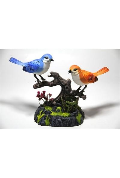 Vardem Kutulu Pilli Müzikli Ve Kuş Sesli Kalemlikli İkili Kuş