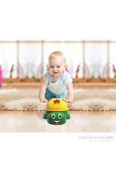 Furkan Kutulu Eğitici Kaplumbağa