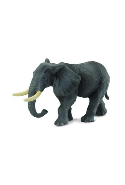 Collecta African Elephant (Xl)