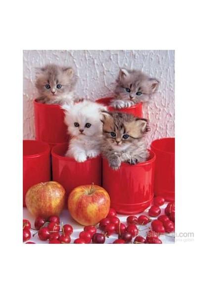 Ks Games Puzzle 200 Parça Cherry Cats, Cris Nikolson