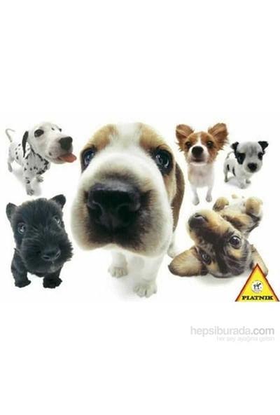Köpekler, Yoneo Morita (100 Parça Puzzle)