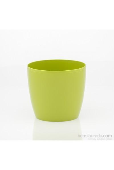 Teraplast Madeıra Luxy (Cedro) 8 Plastik Saksı