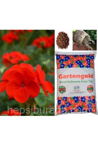 Gartengold Genel Kullanım Organik Torf 40 Litre