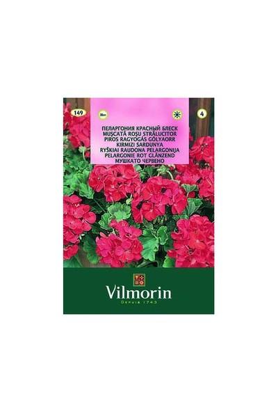 Vilmorin Çok Yıllık Kırmızı Sardunya Çiçek Tohumu