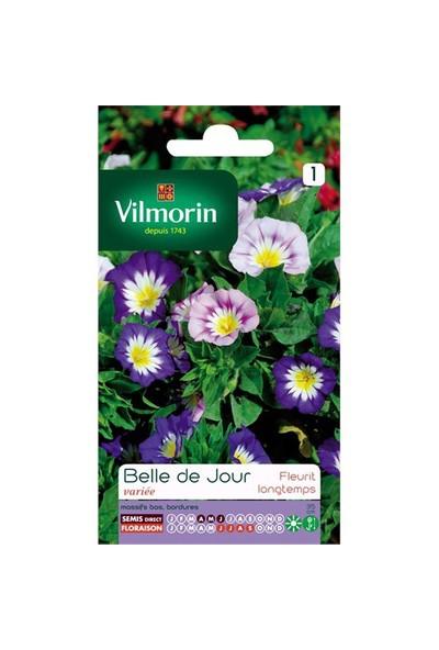 Vilmorin Gündüz Güzeli Çiçek Tohumu
