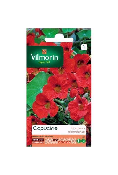 Vilmorin Kırmızı Renkli Latin Çiçeği Çiçek Tohumu