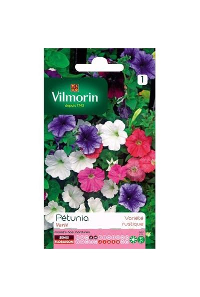 Vilmorin Karışık Renkli Kısa Petunya Çiçek Tohumu