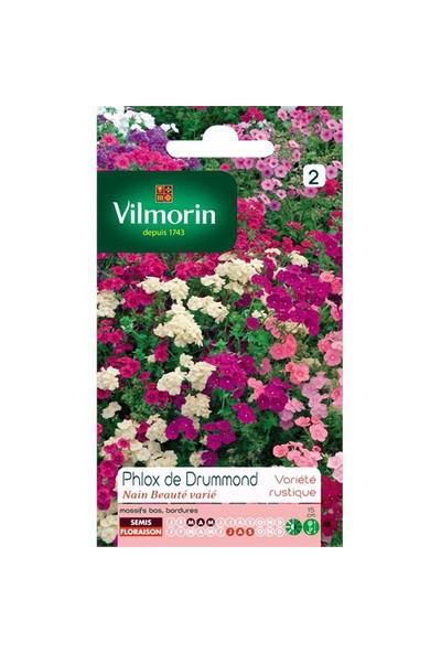 Vilmorin Karışık Renkli Alev Çiçeği Çiçek Tohumu