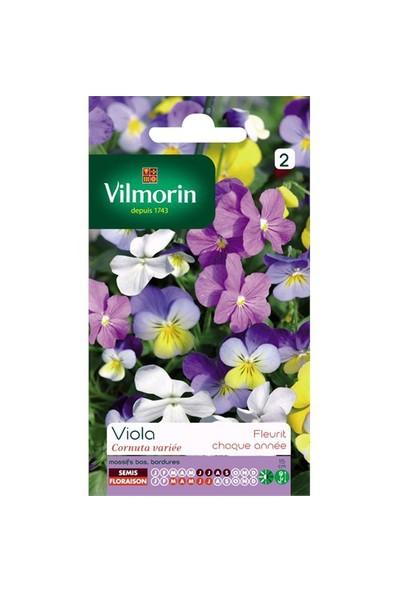 Vilmorin Hercai Menekşe (Karışık Renkli) Çiçek Tohumu