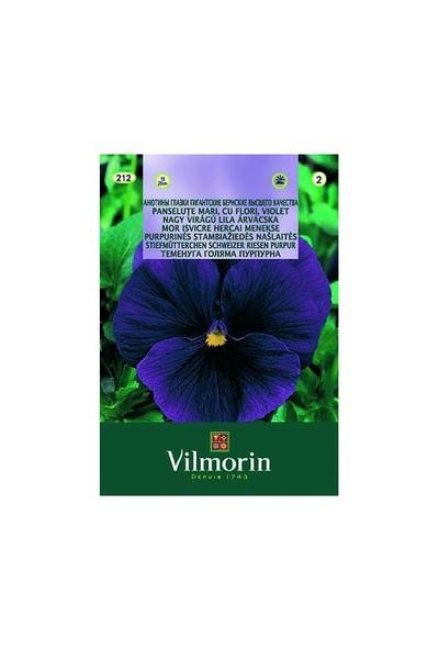 Vilmorin Hercai Menekşe (Mor Alacalı) Çiçek Tohumu