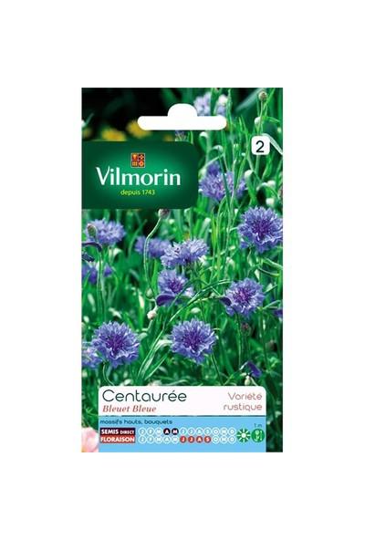 Vilmorin Peygamber Çiçeği - Gökbaş - Mavi Kantaron Çiçek Tohumu
