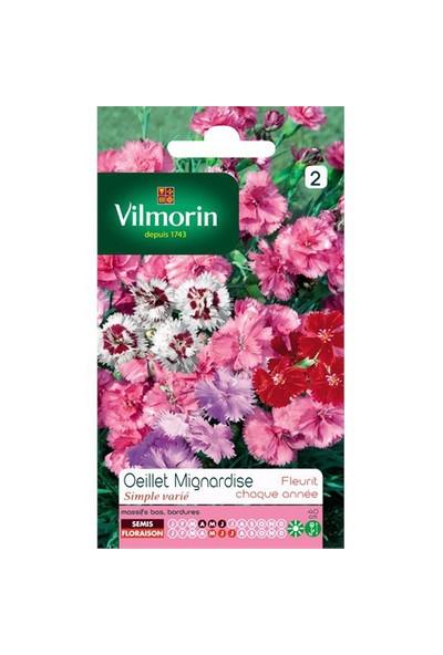 Vilmorin Küçük Çiçekli Karışık Karanfil Çiçek Tohumu