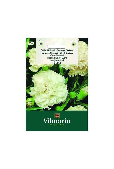Vilmorin Beyaz Renkli İri Çiçekli Karanfil Çiçek Tohumu