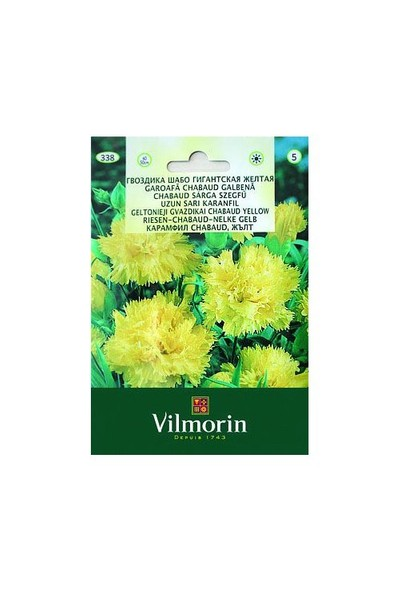 Vilmorin Sarı Renkli İri Çiçekli Karanfil Çiçek Tohumu