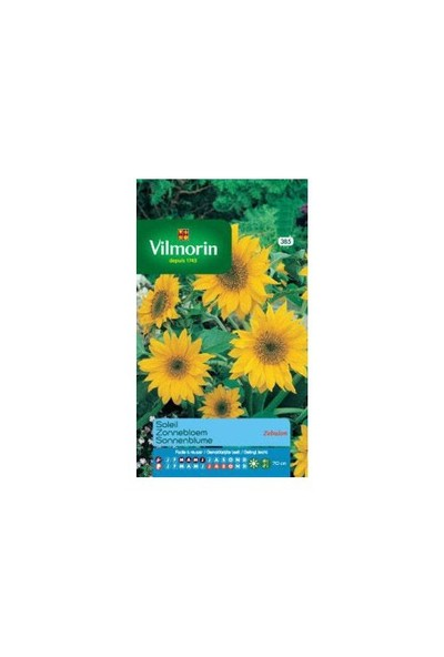Vilmorin Güne bakan Çiçeği - Zebulon Güneş Çiçeği Çiçek Tohumu