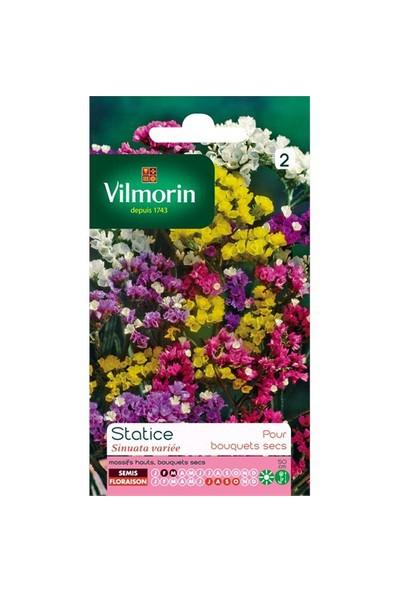 Vilmorin Deniz Lavantası - Statis Karışık Renkli Çiçek Tohumu