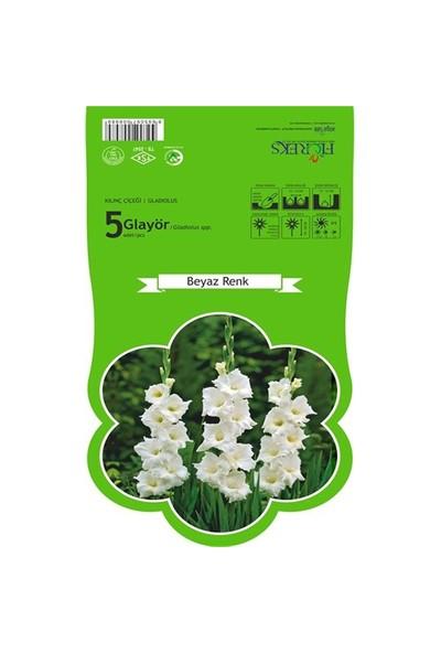 Plantistanbul Glayör Beyaz Renk Paketli