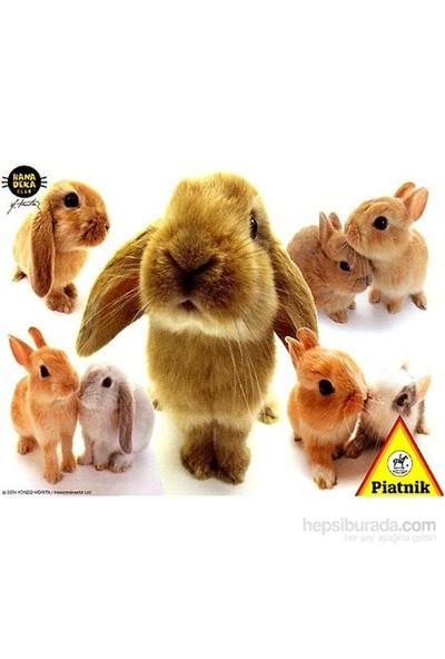 Piatnik 100 Parça Puzzle Hanadeka Tavşanlar
