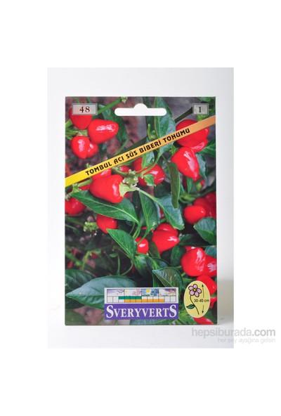 Sveryverts Tombul Acı Süs Biberi Tohumu