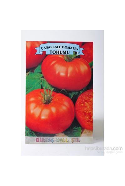 Birtaş Domates (Çanakkale) Tohumu