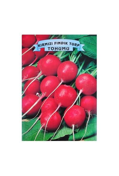 Kırmızı Fındık Turp Tohumu
