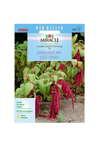 Miracle Tohum Sarkan Kırmızı Amaranthus(Horoz İbiği) Çiçeği Tohumu(1500 Tohum)